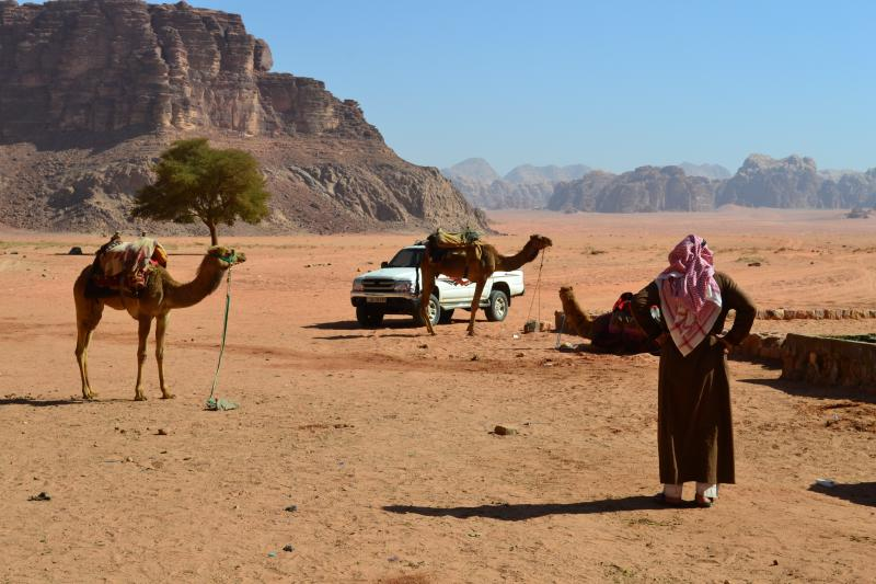 Bedouin with camels in Wadi Rum